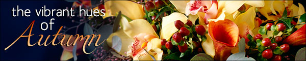 Send Fresh Autumn Flowers from Erschen's to your family and friends in Platteville!