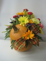SPECIAL! Autumn Celebration